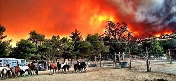 https://www.bartacic.org/wp-content/uploads/2018/08/Wildfires.jpg